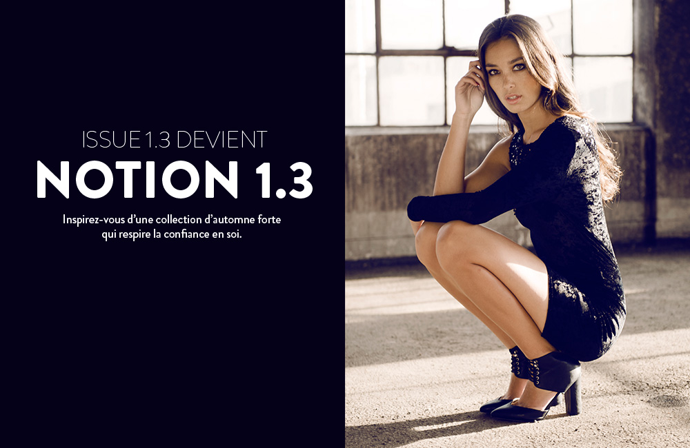 Notion 1.3 aw13